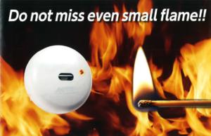 เซนเซอร์ตรวจจับเปลวไฟ